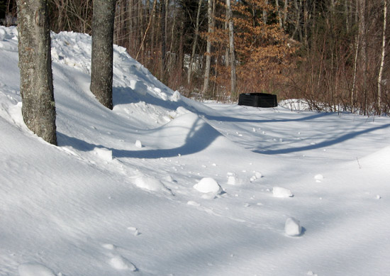 Garden covered by three feet of snow
