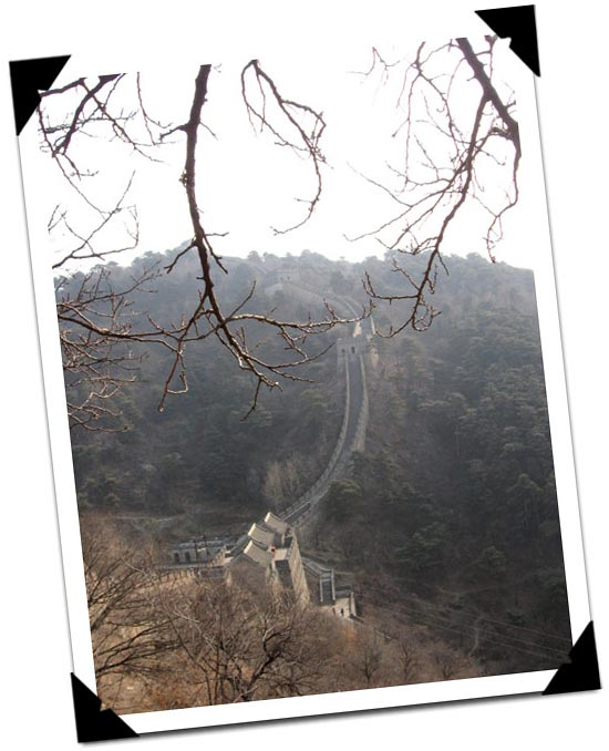 Great Wall through tree branches.