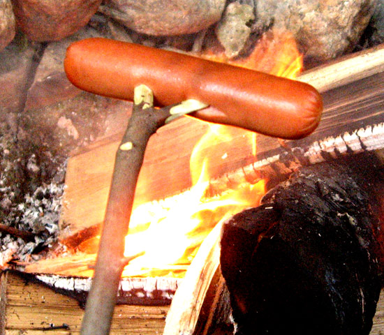 hotdog on a forked stick