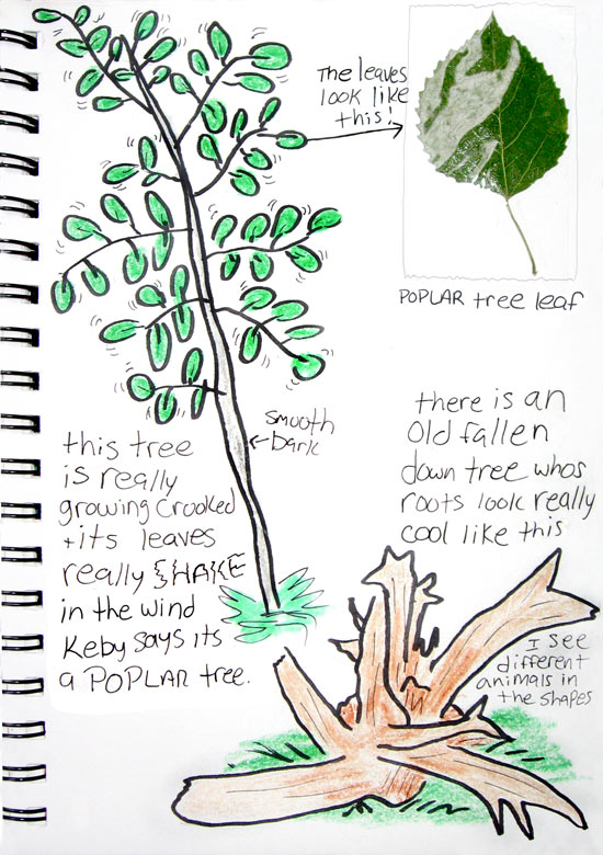 Nature journal tree.
