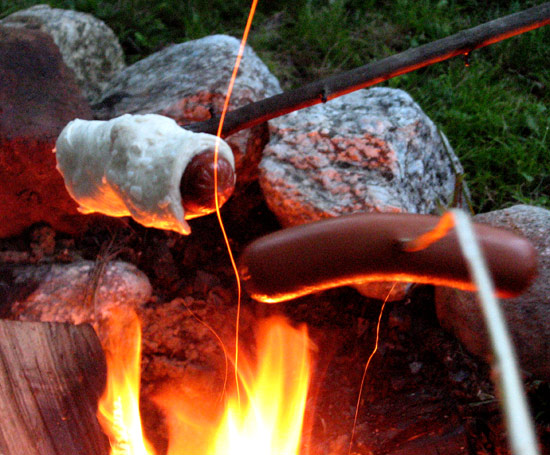 hotdogs cooking over campfire